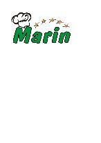 Marin Taverna Rovn